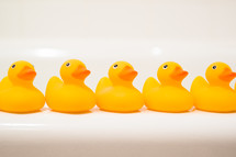 row of rubber duckies