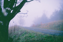 fog over a gravel road