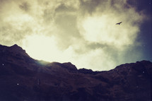 Soaring eagle and a mountain | Background | Light | Shine