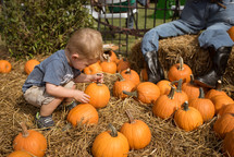 a toddler boy picking out a pumpkin