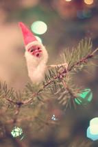 Santa ornament on a limb of pine needles.