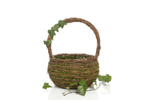 moss in a basket
