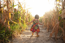 toddler girl walking in a corn field
