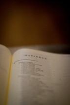 open Bible turned to Habakkuk