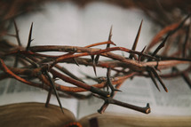 crown of thorns over a Bible