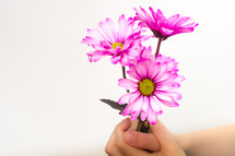 Hands holding flowers.