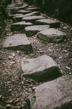 a path of stepping stones  through a rocky crevice