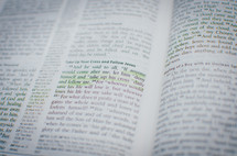 A bible opened up to a gospel passage highlighted in green entitled 'Take up your cross and follow Jesus'.