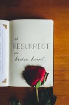 I will Resurrect your broken heart