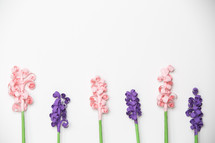 pink and purple flowers on a white background