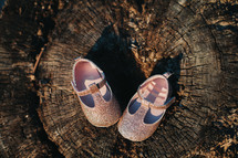 baby girl shoes on a stump