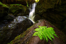 waterfall flowing over mossy rocks