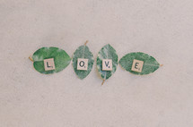 "Scrabble letters spell out ""love"" on leaves."