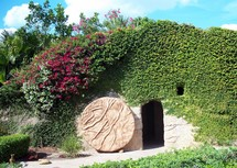 The Tomb of Jesus with the stone rolled away surrounded by green ivy, vines and flowers.