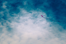 Red kite in the sky.