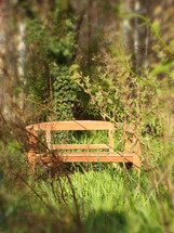 wooden bench sitting in a woody area