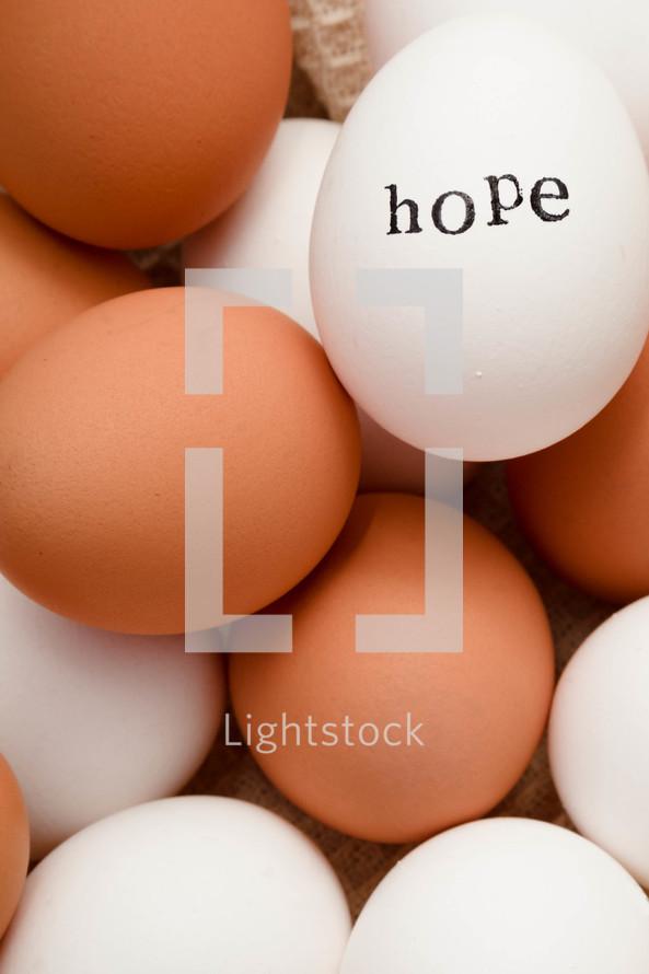 word hope on eggs