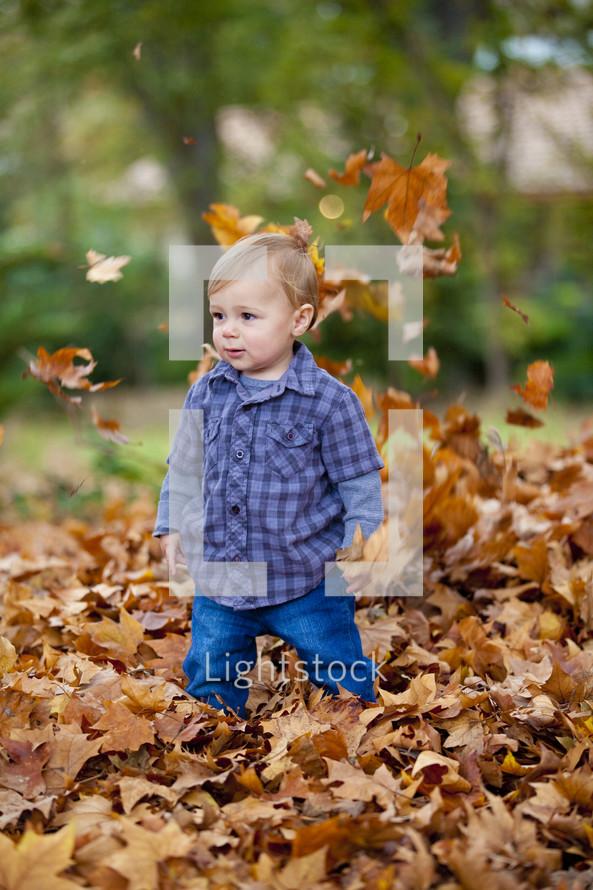 toddler boy in a leaf pile