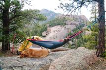 a woman in a hammock next to her golden retriever