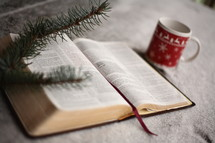 open Bible at Christmas
