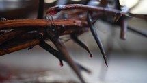 blood on a crown of thorns