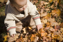 Toddler boy playing in leaves