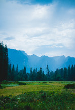 Meadow and forest in a valley and mountain peaks | Landscape | Nature | Peaceful | Peace | Tranquility | Sky | Day | Light | Green  | Background