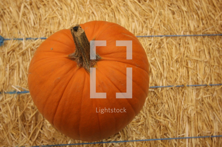 Pumpkin sitting on hay bale.