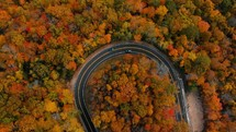 aerial view over a road through an autumn forest