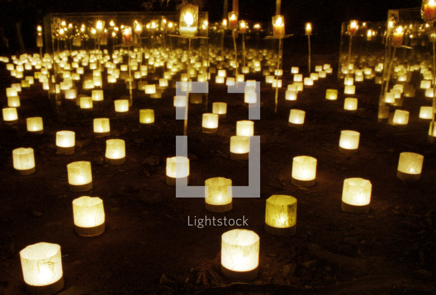 Field of candles