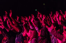 young women with raised hands at a concert