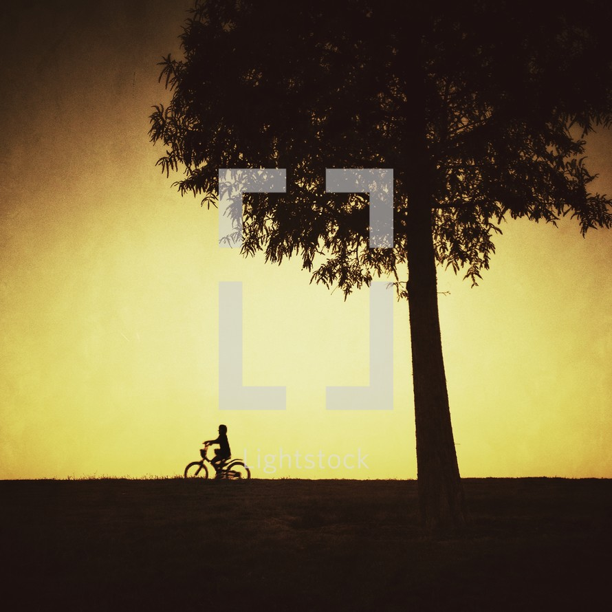 silhouette of a child riding a bicycle under a tree