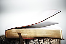 A bible closed with it's bookmark in the foreground