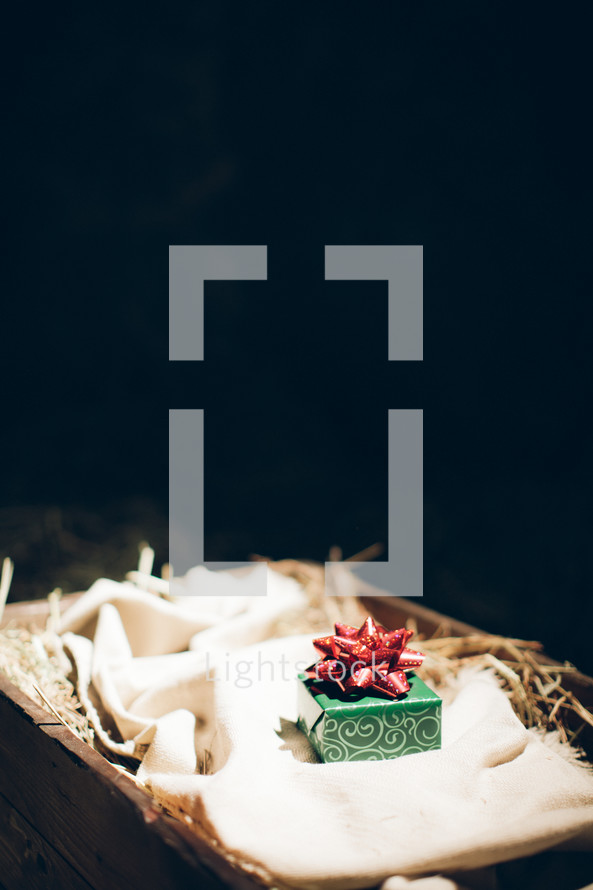 Green wrapped box with red bow lying on hay-filled basket.