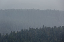 forest and mountains through smokey evening sky