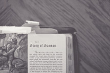 Story of Samson