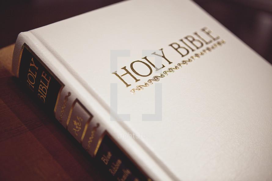 A white Holy Bible