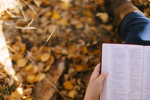 Holding bible open and reading in autumn