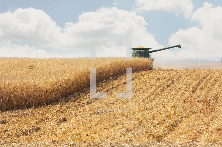 Tractor cutting wheat field
