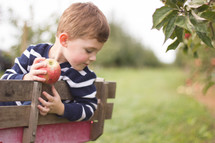 a boy holding an apple riding in a wagon