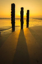 old posts in the sand on a beach at sunset