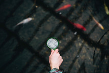 magnifying glass over a koi pond