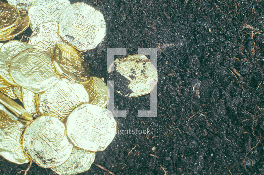 gold coins on dirt