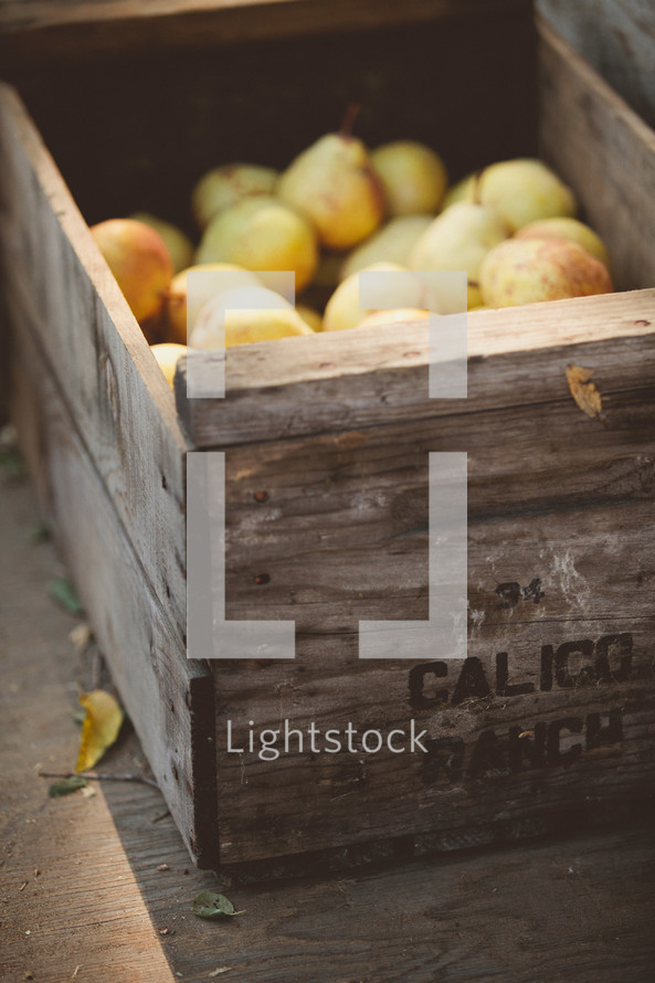 wooden crate of pears
