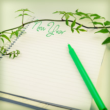 vine, New Years, notebook, pen, writing, notepad, paper