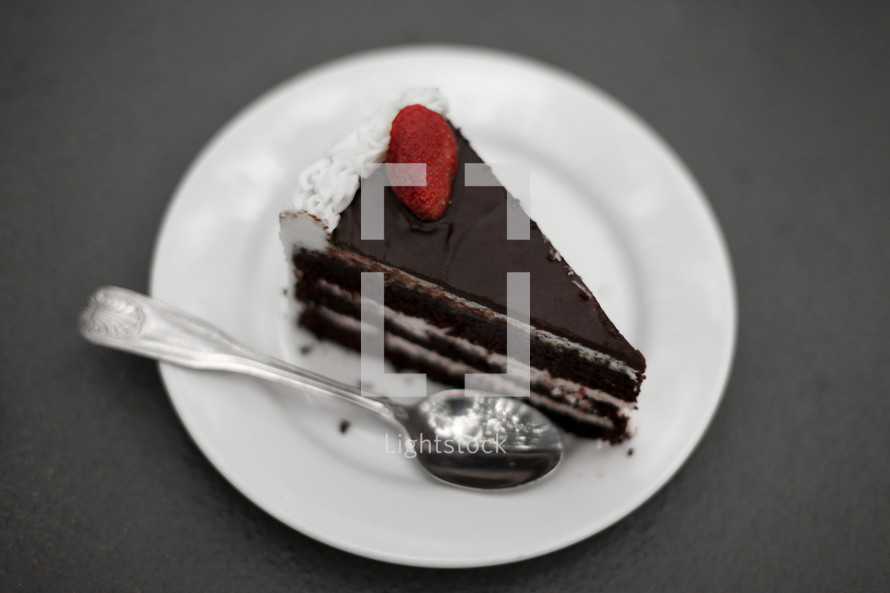 A slice of chocolate cake on a white plate.