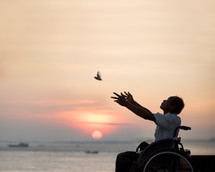 man in a wheelchair releasing a bird