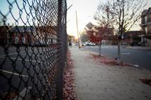 chain link fence lining a sidewalk in fall