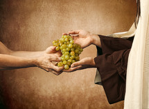 Jesus giving grapes to a beggar