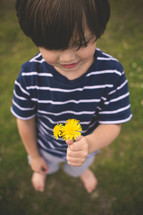 toddler boy holding dandelions